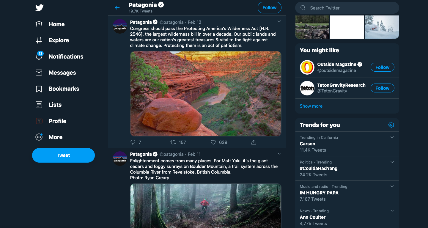 Patagonia Twitter Athletic Marketing Post