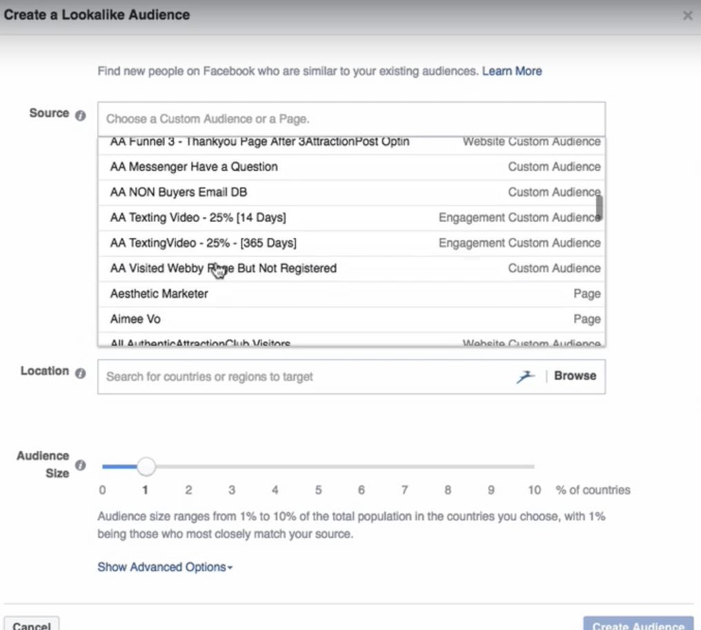 Facebook Ads Lookalike Audience