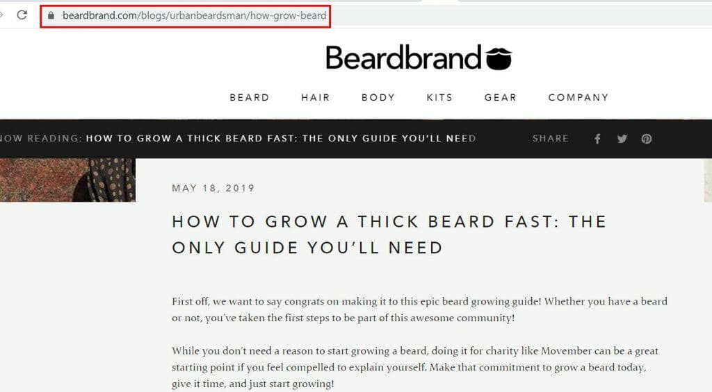 beard brand URL example