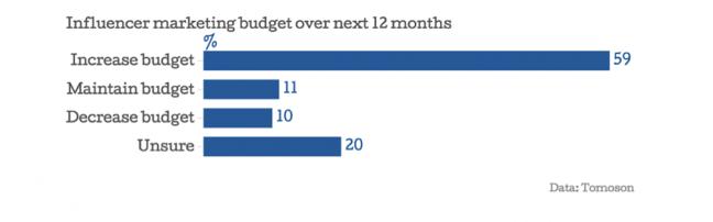 Influencer Marketing Budget in 12 months